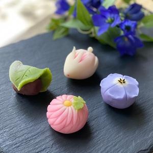 【春華堂】9月の上生菓子のお知らせ