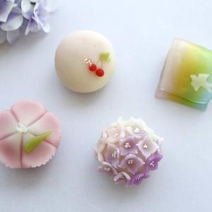 【春華堂】6月の上生菓子のお知らせ